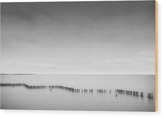 Lake Wellington Wood Print