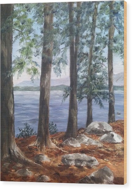 Lake Winnepesaukee Wood Print