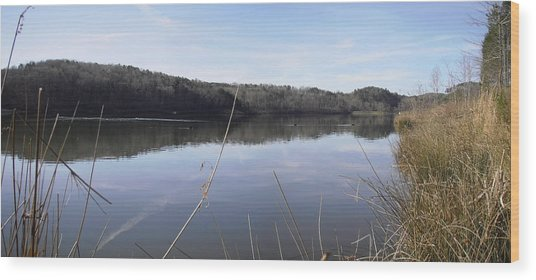 Lake Zwerner Early Spring Wood Print
