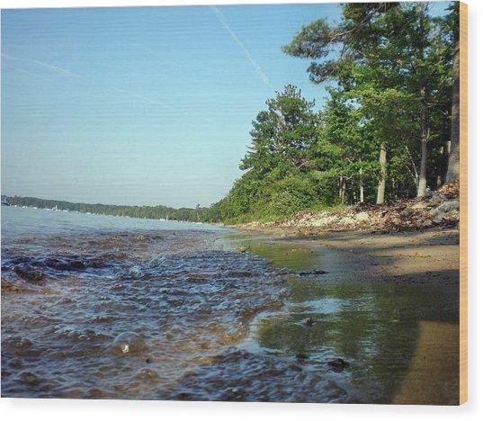 Lakeshore Bubbles Wood Print by Bill Noonan