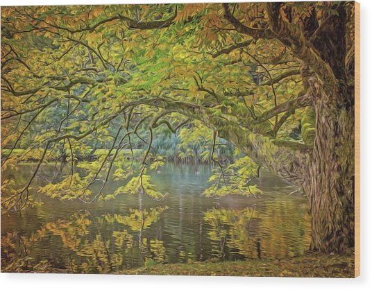 Lakeside Wood Print