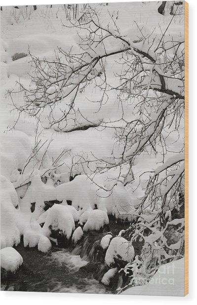 Lambs Canyon In Winter Wood Print by Dennis Hammer
