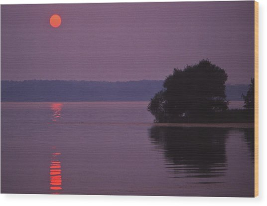 Land-between-the-lakes Sunset - 1 Wood Print by Randy Muir