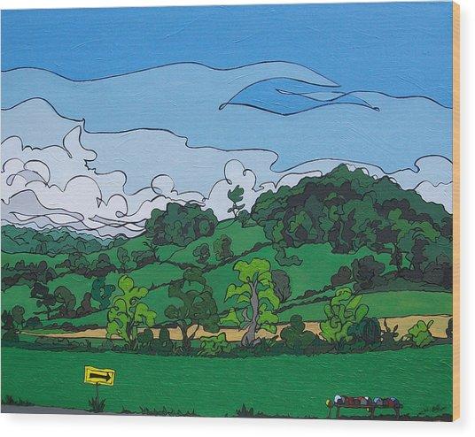 Landscape 63 Wood Print