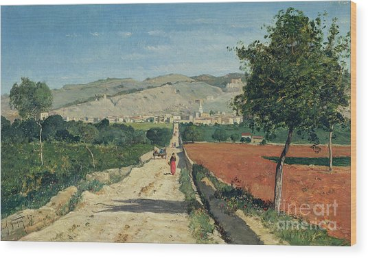 Landscape In Provence Wood Print