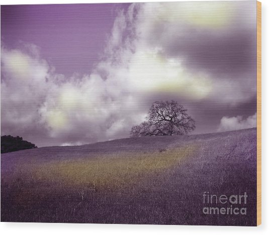 Landscape In Purple And Gold Wood Print by Laura Iverson