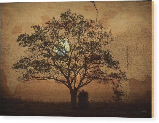 Landscape On Adobe Wall Wood Print