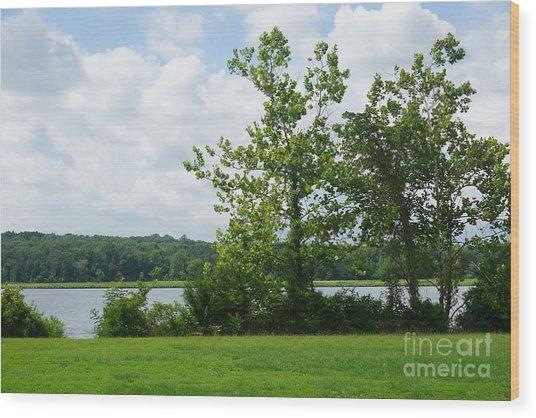 Landscape Photo II Wood Print