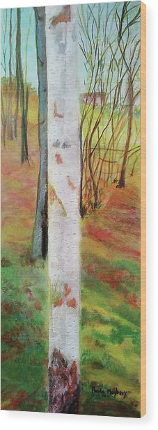 Landscape Silver Birch Wood Print
