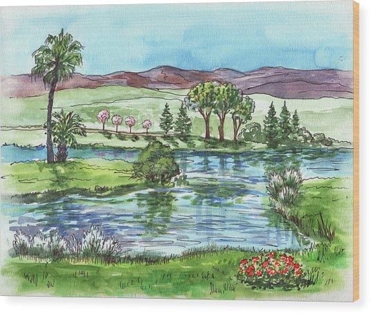 Landscape Spring In California Wood Print