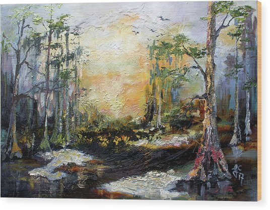 Landscape Wetland Suwanee River Black Water Wood Print