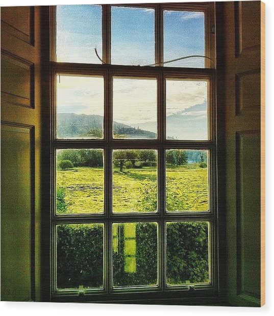#landscape #window #beautiful #trees Wood Print