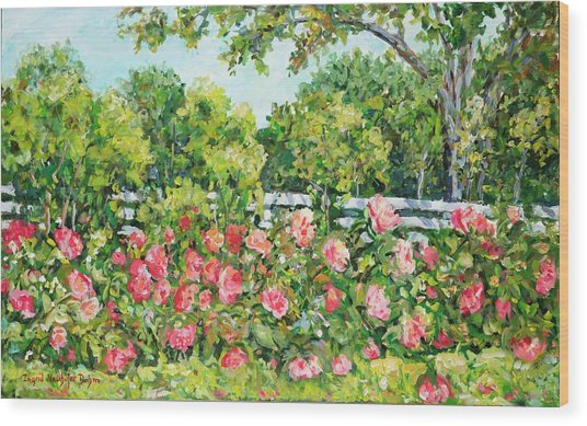 Landscape With Roses Fence Wood Print