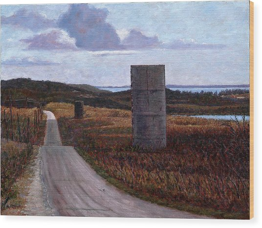 Landscape With Silos Wood Print