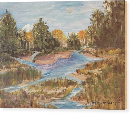 Landscape_1 Wood Print