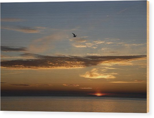 Lanesville Sunset Wood Print