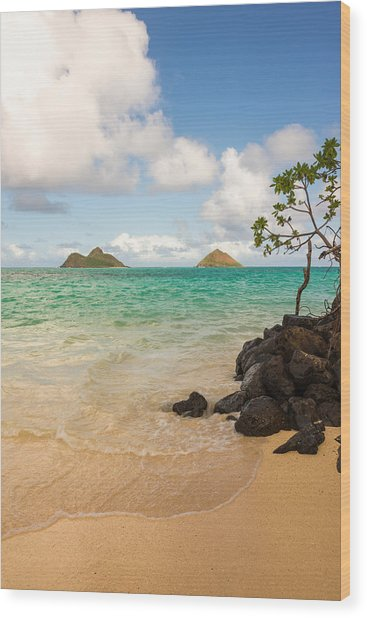 Lanikai Beach 1 - Oahu Hawaii Wood Print