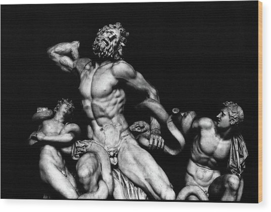 Laocoon And His Sons Aka Gruppo Del Laocoonte Wood Print by Michael Fiorella
