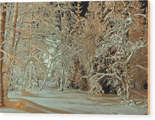 Laplandia Wood Print by Boris Shekhirev