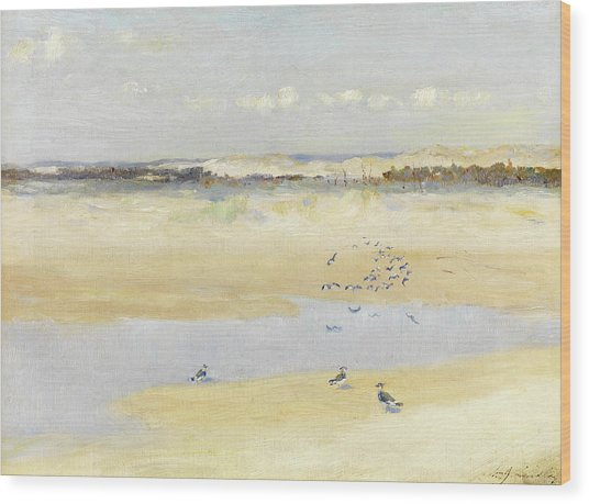 Lapwings By The Sea Wood Print