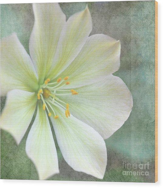 Large Flower Wood Print