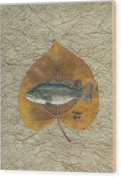 Large Mouth Bass #3 Wood Print