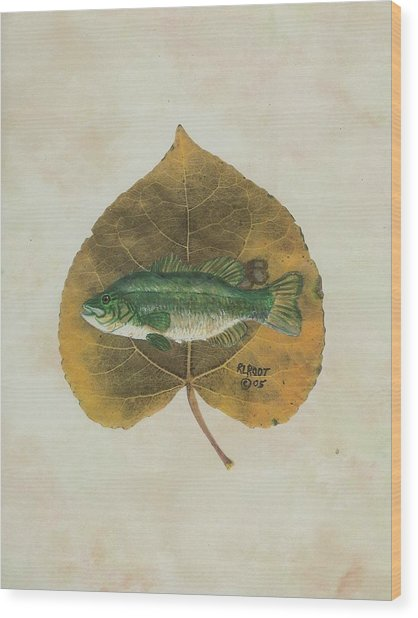 Large Mouth Bass Wood Print