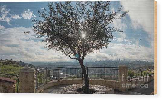 Large Tree Overlooking The City Of Jerusalem Wood Print