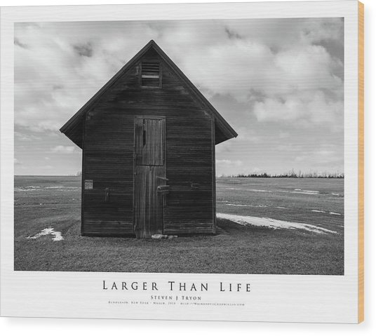 Larger Than Life Wood Print by Steven Tryon