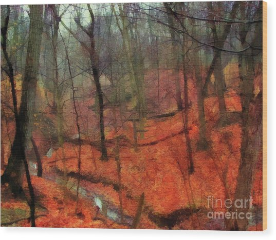 Last Days Of Autumn - Limited Edition Wood Print