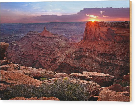 Last Light At Dead Horse Point Wood Print