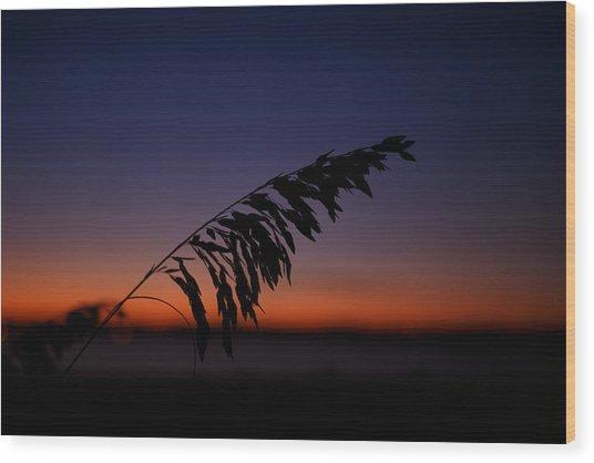 last light at Hilton Head Island Wood Print