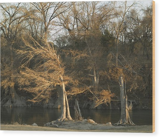 Last Light Wood Print by Clyde Replogle