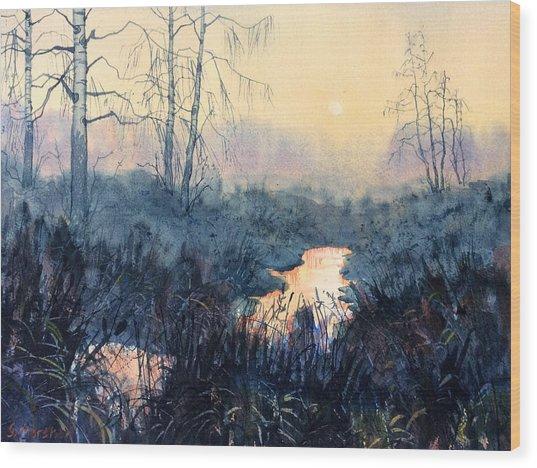 Last Light On Skipwith Marshes Wood Print