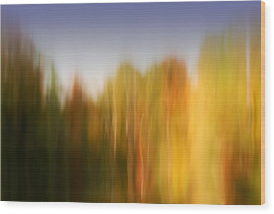 Last November At Duke Wood Print by Margaret Denny