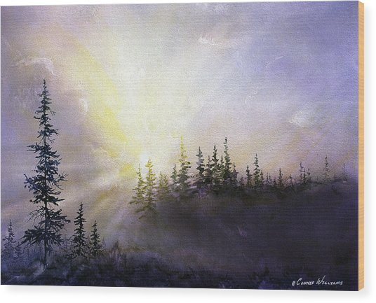 Last Rays Sunset Wood Print