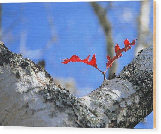 Last To Leaf Wood Print