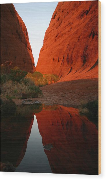 Late Afternoon Light And Reflections At Kata Tjuta In The Northern Territory Wood Print