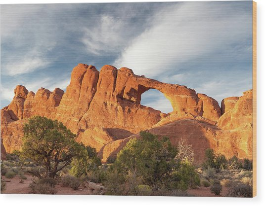 Late Afternoon Light On Skyline Arch Wood Print