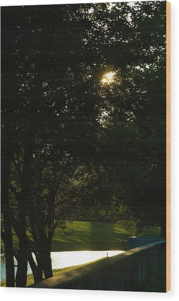 Late Afternoon Wood Print by Pit Hermann