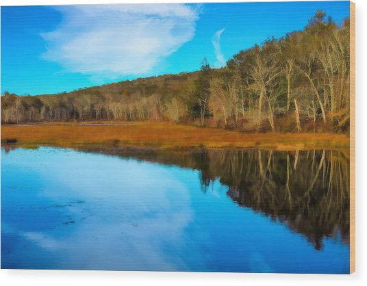 Late Fall At A Connecticut Marsh. Wood Print