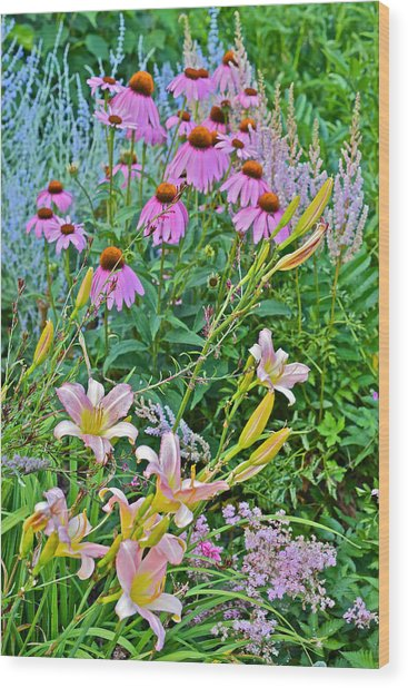 Late July Garden 3 Wood Print