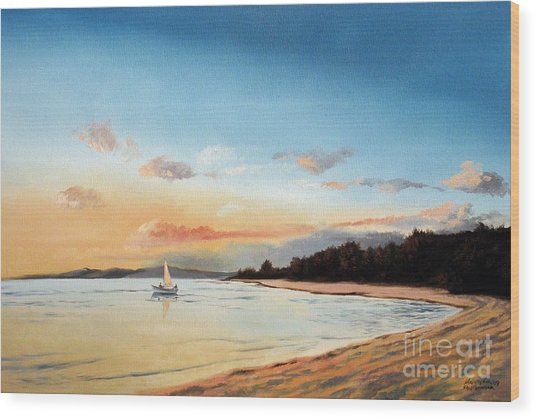 Late Sunset Along The Beach Wood Print