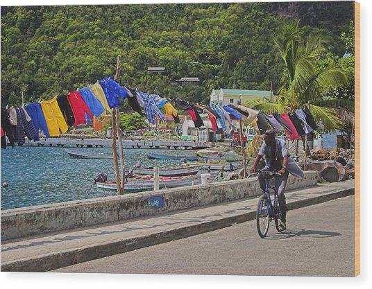 Laundry Drying- St Lucia. Wood Print by Chester Williams