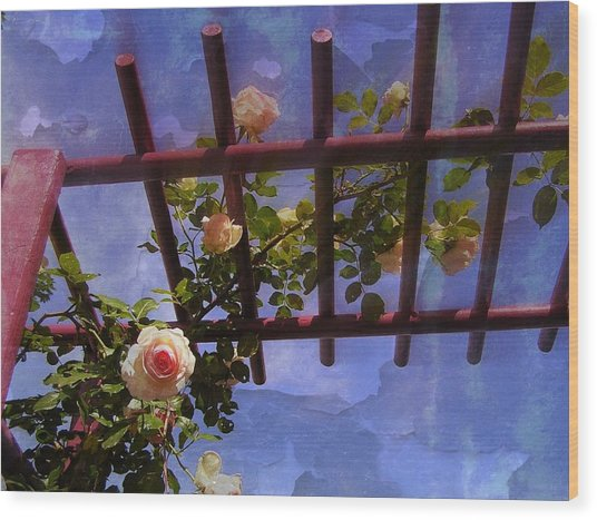 Laura's Rose Trellis 2 Wood Print by Jen White