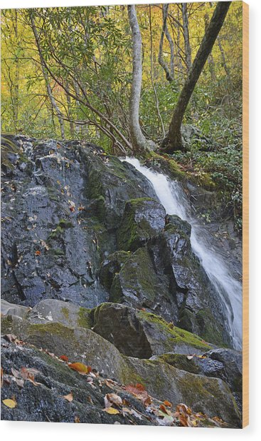 Laurel Falls Great Smoky Mountains National Park Wood Print