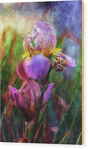 Lavender Iris Impression 0056 Idp_2 Wood Print
