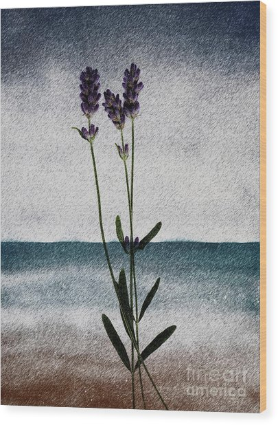 Lavender Ocean Breath Wood Print