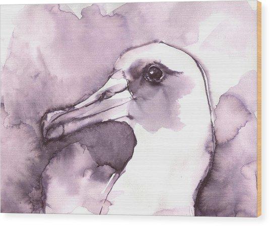 Laysan Albatross Wood Print