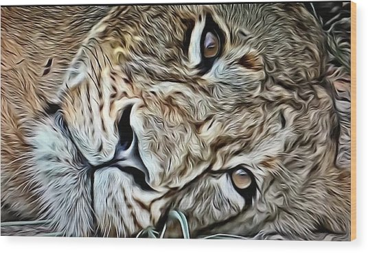 Lazy Lion Wood Print